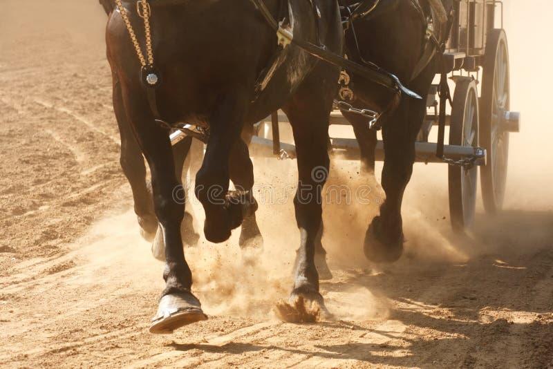 лошади вытягивая фуру стоковое изображение