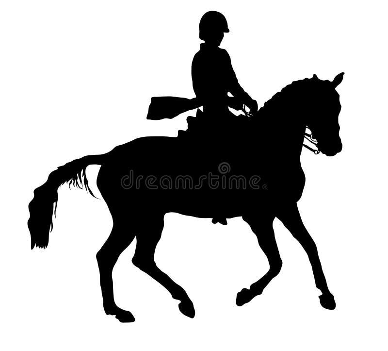 Лошадь и всадник Dressage стоковая фотография