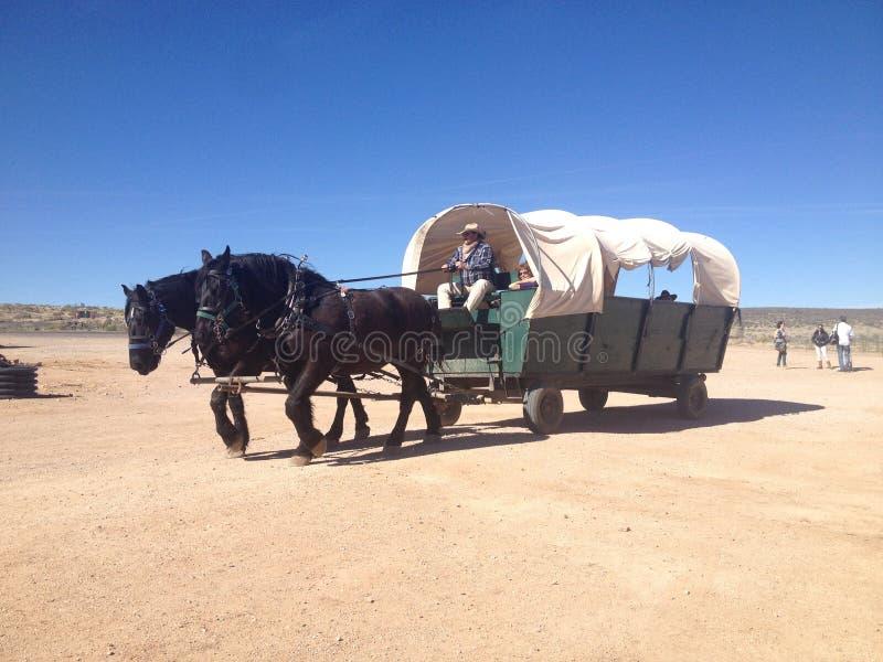 Лошадь и фура Аризона стоковые фотографии rf