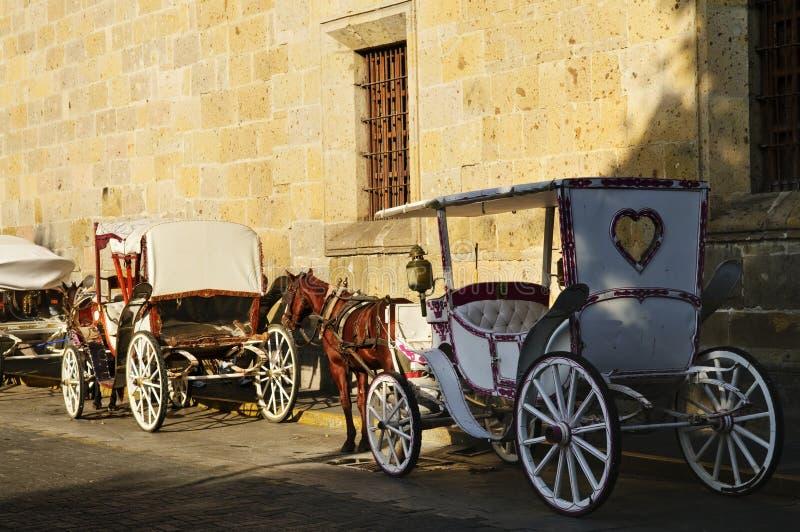 лошадь нарисованная экипажами guadalajara Мексика стоковые фотографии rf