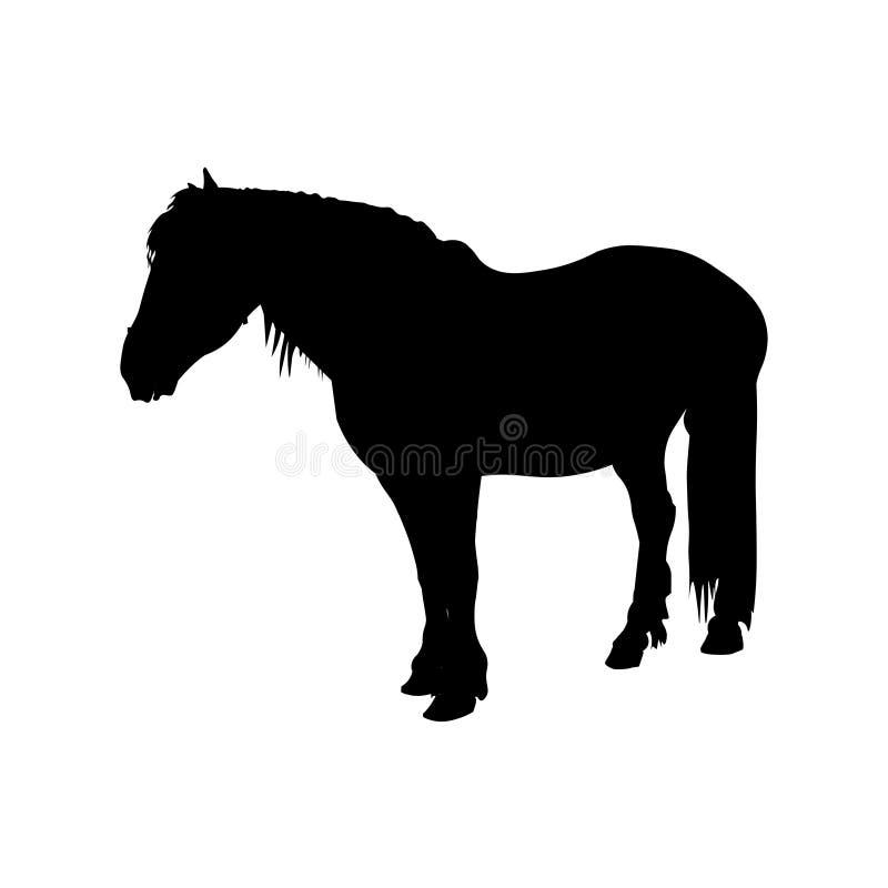 Лошадь проекта графства стоковые изображения