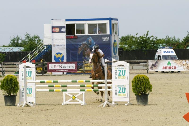 лошадь скачет мое портфолио к гостеприимсву стоковые фотографии rf