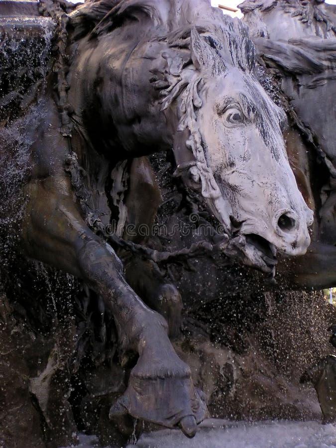 лошадь фонтана Стоковое фото RF