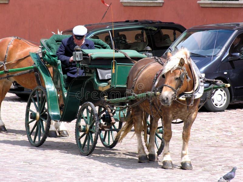 лошадь экипажа стоковые изображения rf