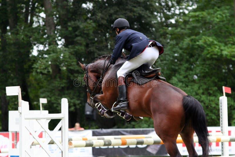 Download лошадь стоковое фото. изображение насчитывающей снаружи - 1192876