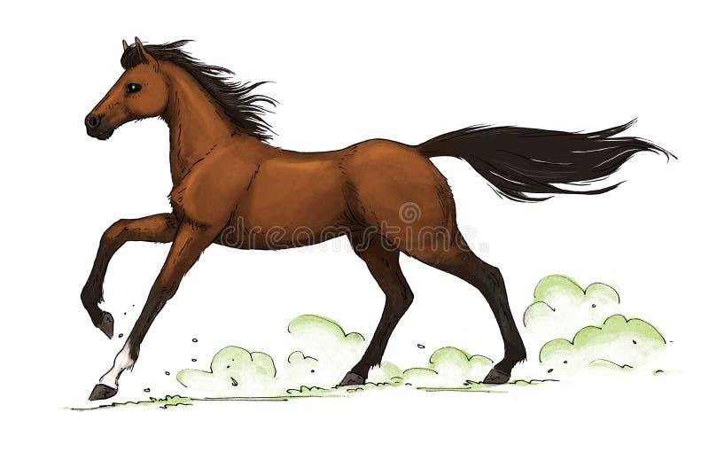 лошадь gallop залива иллюстрация штока