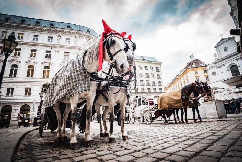 Лошад-нарисованный экипаж в центре города квадрата рядом с дворцом Hoffburg стоковая фотография rf