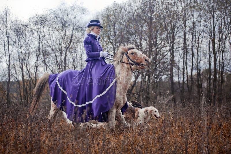 Лошад-звероловство с дамами в привычке катания стоковые изображения