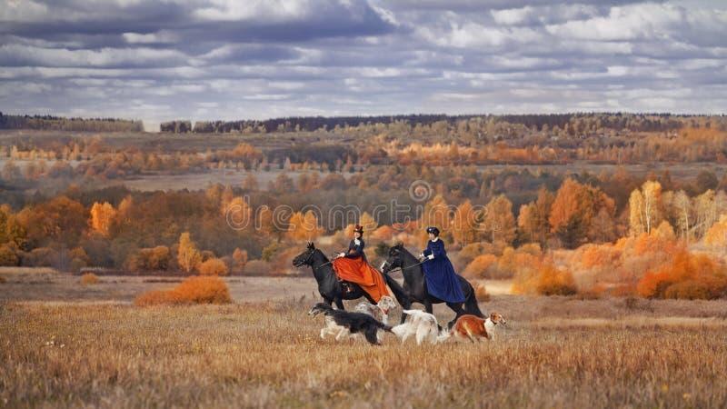 Лошад-звероловство с всадниками в привычке катания стоковое фото