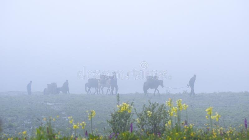 Лошади и наездники нося товары, западный Китай стоковые изображения rf