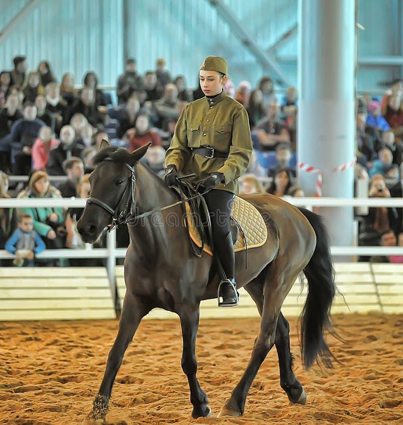 Download Лошади породы выставки редакционное стоковое изображение. изображение насчитывающей angoras - 40585509
