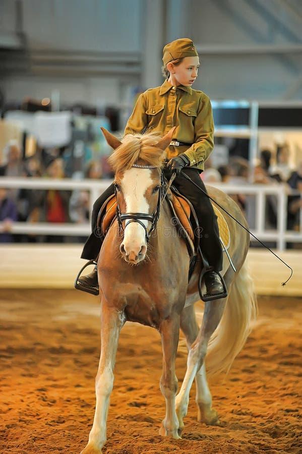 Download Лошади породы выставки редакционное стоковое изображение. изображение насчитывающей лошадь - 40585684