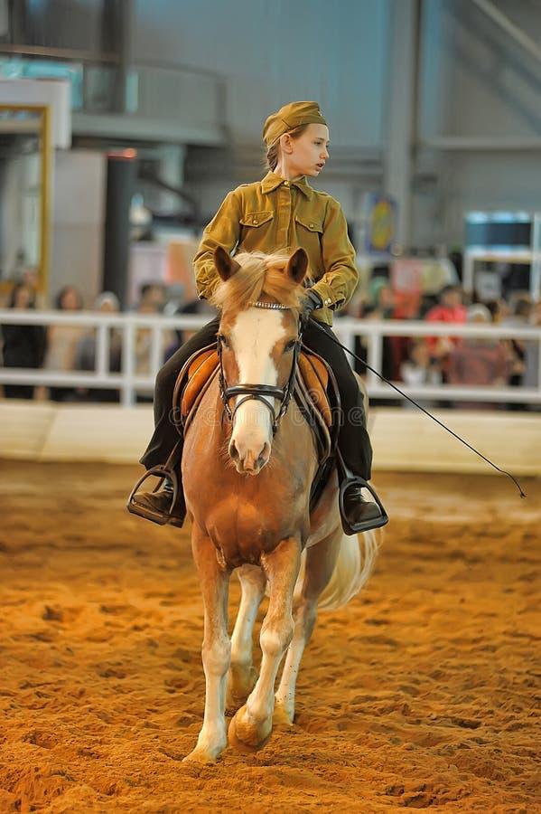 Download Лошади породы выставки редакционное стоковое изображение. изображение насчитывающей разводя - 40585719