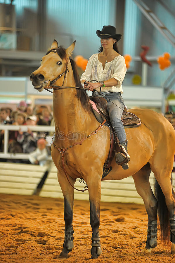 Download Лошади породы выставки редакционное стоковое фото. изображение насчитывающей выставка - 40588273