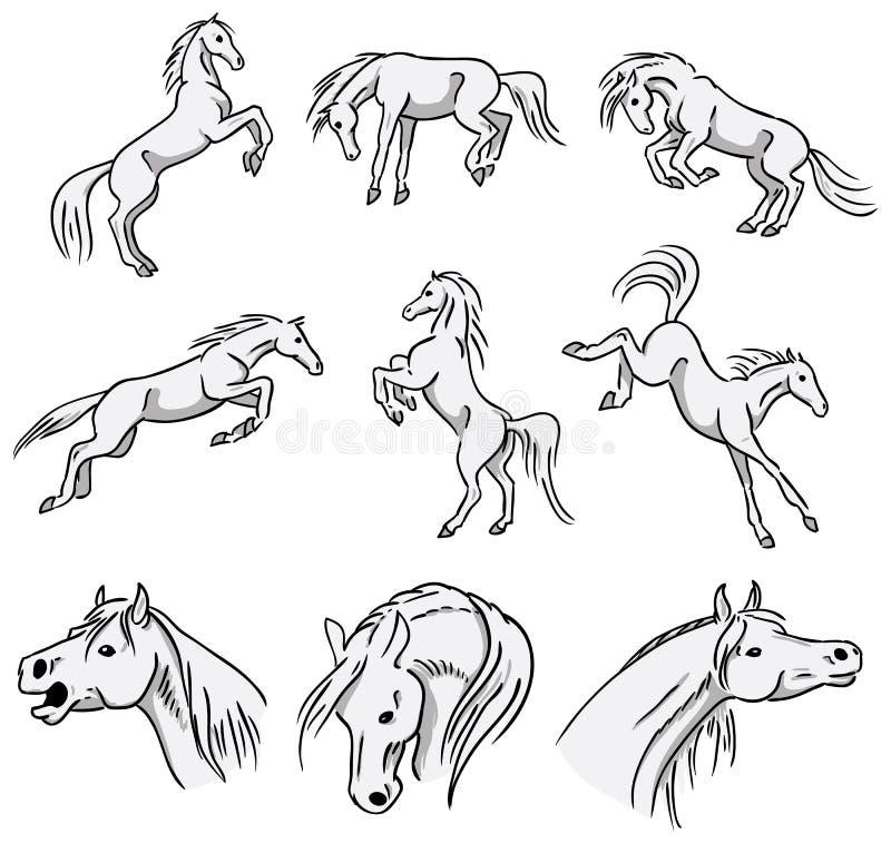 Лошади поднимающ, bucking и скакать аравийские иллюстрация вектора