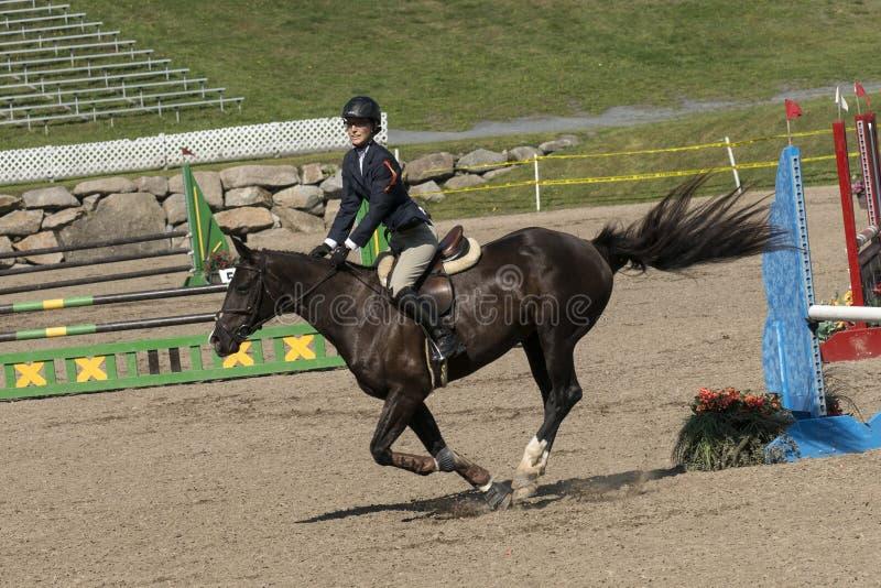 Лошадь при всадник завершая скачку стоковое изображение