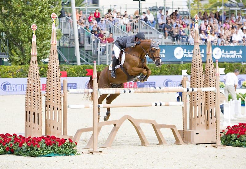 Лошадь скача - арии Джулио стоковые изображения