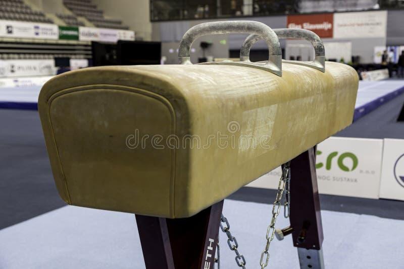 Лошадь луки стоковая фотография