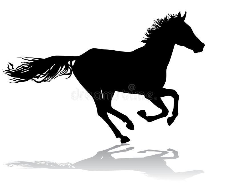 Download Лошадь 2 иллюстрация вектора. иллюстрации насчитывающей mammal - 33736457