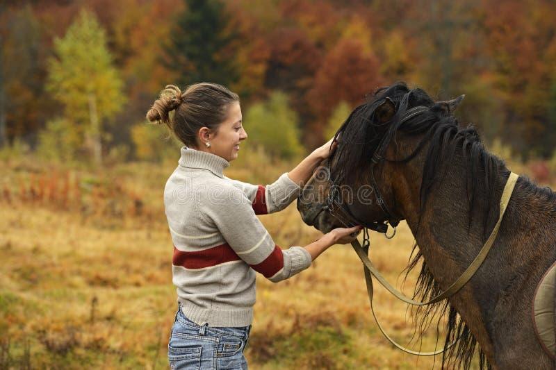 Download Лошадь стоковое фото. изображение насчитывающей ungulates - 40579312