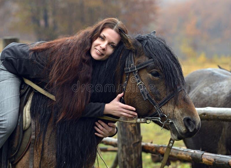Download Лошадь стоковое изображение. изображение насчитывающей прикарпатско - 40579325