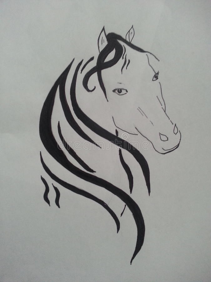 Лошадь Trival стоковые фотографии rf