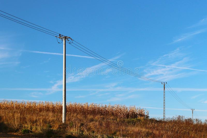Луг лета в лучах солнца с неизбежной линией thundercloud и электричества Изменение погоды Шторм на солнечный день Na стоковое изображение rf