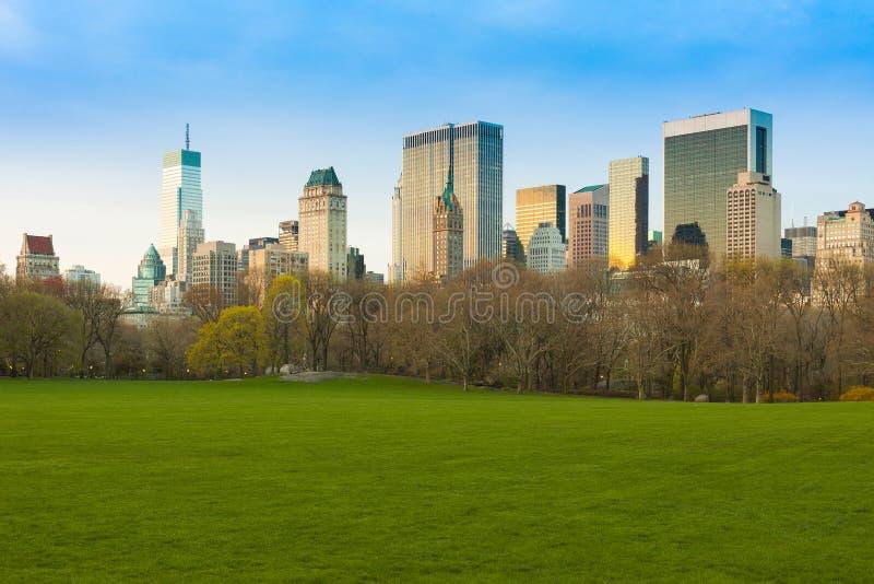 Луг овец на горизонте Central Park и центра города, Нью-Йорке стоковое изображение rf