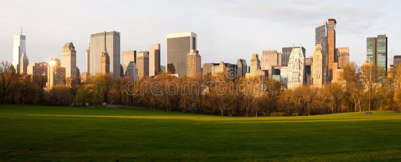 Луг овец на Central Park стоковое изображение rf