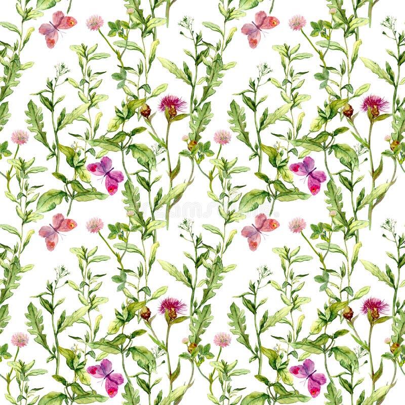 Луг с бабочками, травами и цветками Безшовный цветочный узор акварели иллюстрация штока