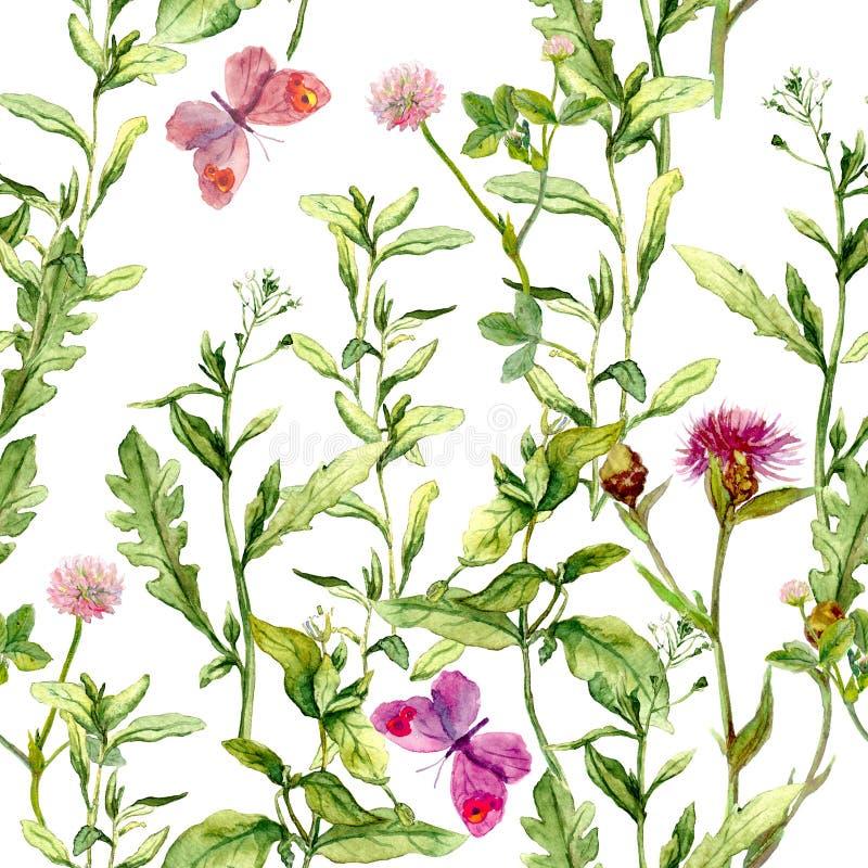 Луг с травами, цветками и бабочками Безшовная винтажная картина акварели иллюстрация вектора