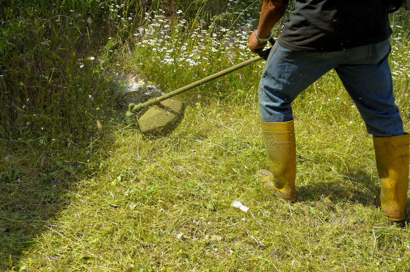 Лужайка вырезывания садовника стоковая фотография rf