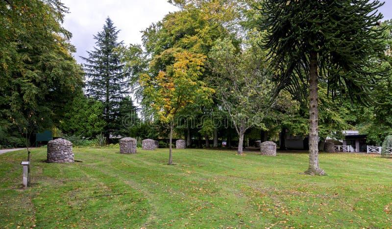 Лужайка с немного небольших насыпей около a выбирает металлическую пластинку жизни и засаженное дерево для предотвращает кампанию стоковое изображение