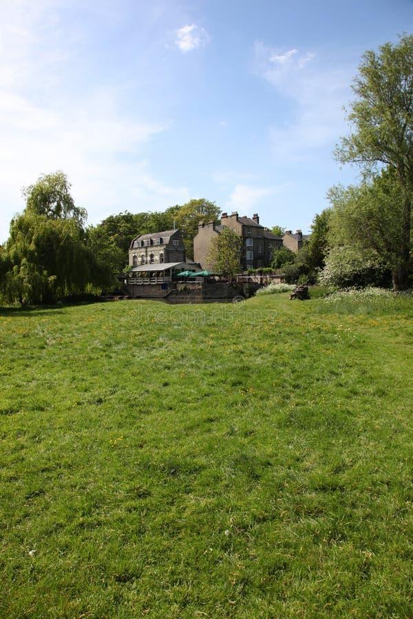Лужок берег реки Кембридж стоковые изображения