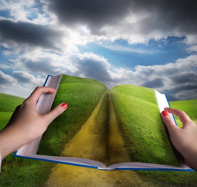 лужок ландшафта книги открытый иллюстрация штока