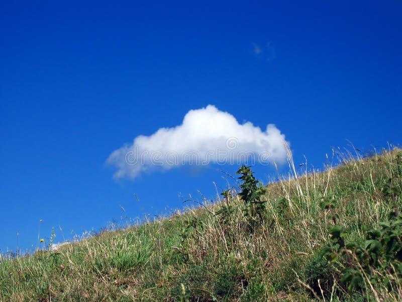 лужок облака стоковые фотографии rf