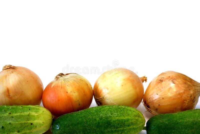 Луки и cocumbers на белом конце предпосылки вверх стоковое изображение rf