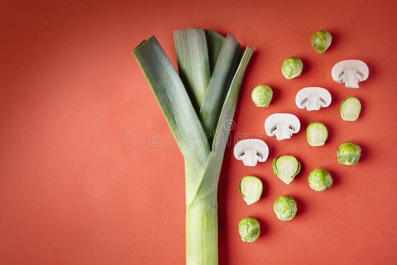 Лук-порей, ростки Брюсселя, выращиванные в питательной среде: грибы на красной предпосылке Сезонные овощи в современной картине с стоковые изображения rf