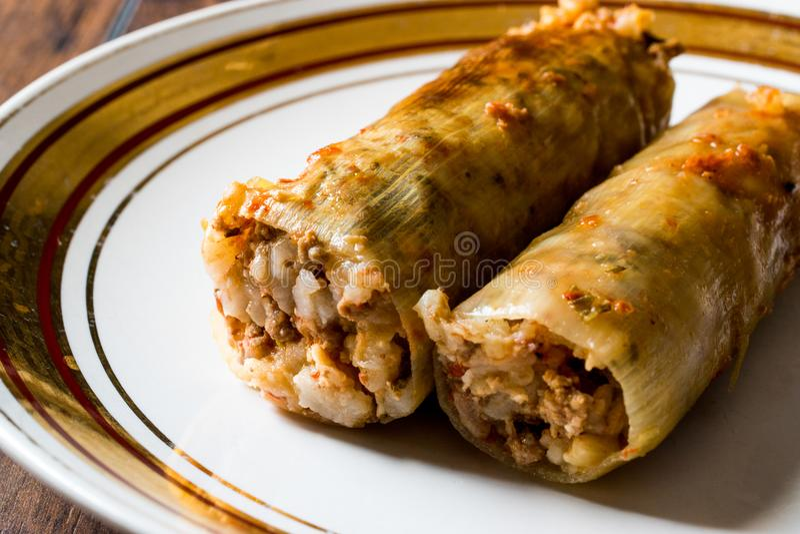 Лук-порей Dolma Turkish заполненный с рисом и мясом/Pirasa Sarma стоковое фото