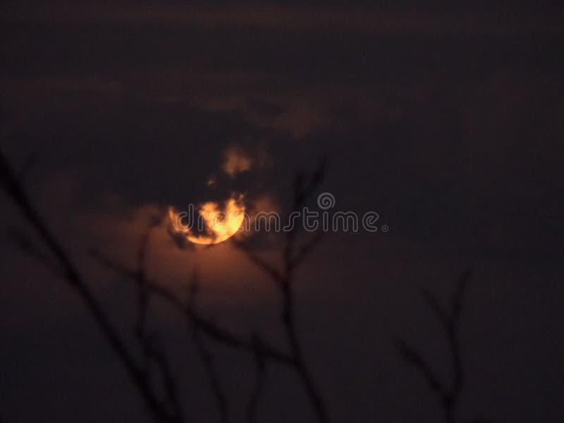 Луна в ноябре стоковая фотография
