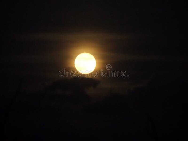 Луна в ноябре стоковые фото