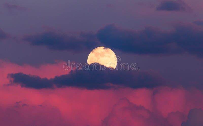 Луна в облаках пинка на заходе солнца стоковое фото rf