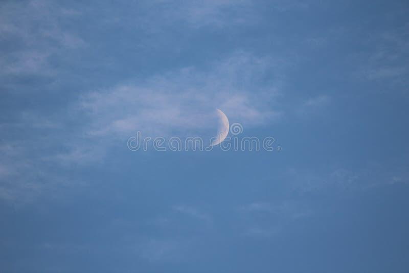 Луна лета стоковое изображение rf