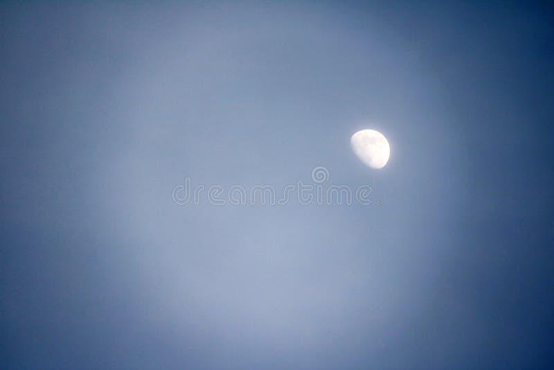 Луна на дневном свете, это естественный спутник земли стоковые фотографии rf