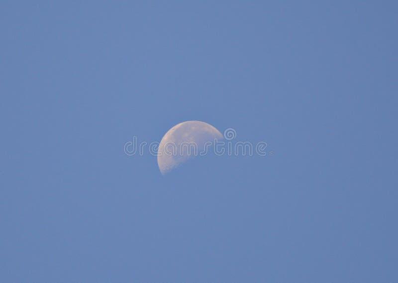 Луна дневного времени стоковое фото