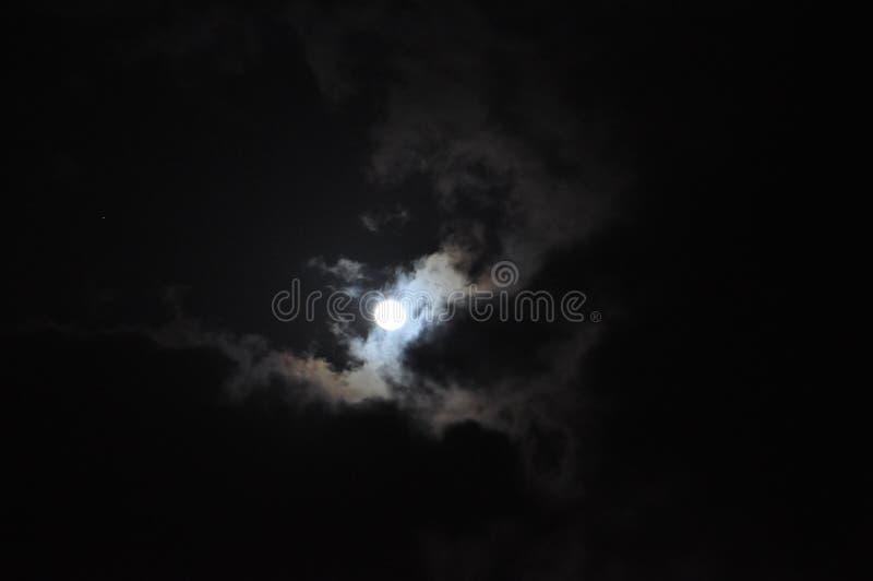 Луна ночи стоковые изображения rf