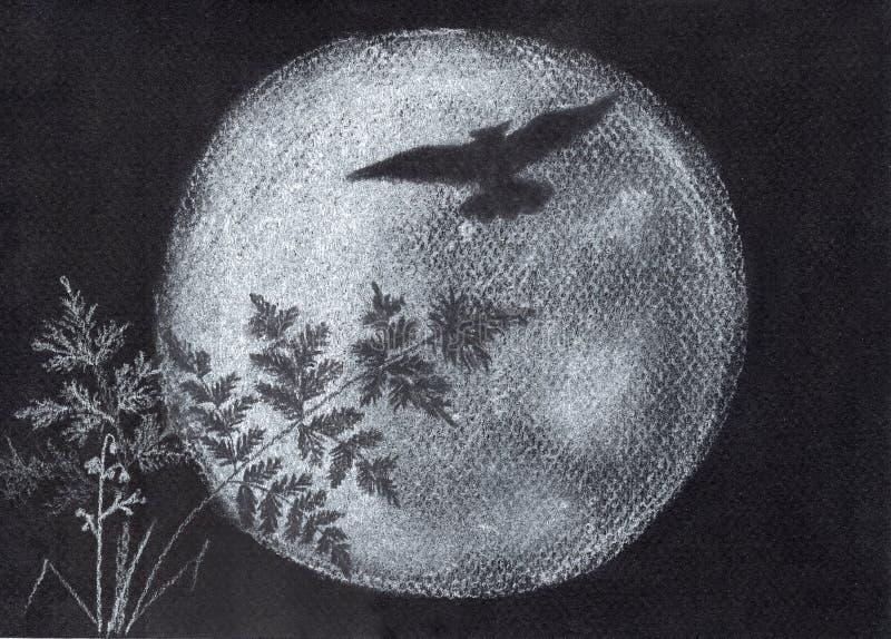 Луна сыча и дурачка силуэт стоковая фотография rf