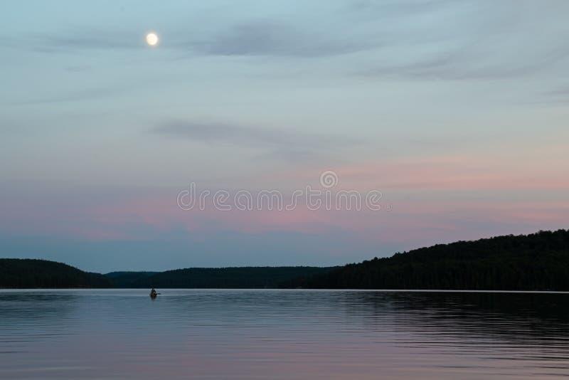 Лунь в летнем закате над водой стоковая фотография rf