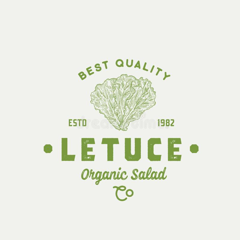 Лучшая модель Lettuce Abstract Vector Sign, Symbol или Logo Template Премиумная овощная или зеленая пищевая эмблема Рука нарисова иллюстрация вектора