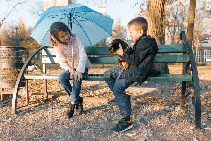 Лучшие други мальчик и девушка детей сидя на стенде в парке с таксой собаки, детьми говоря и усмехаясь, солнечная осень стоковые фото